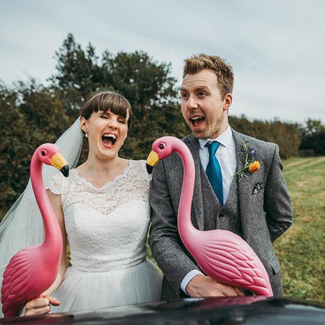 Chris & Isobel's flamingo farm wedding - A Preview