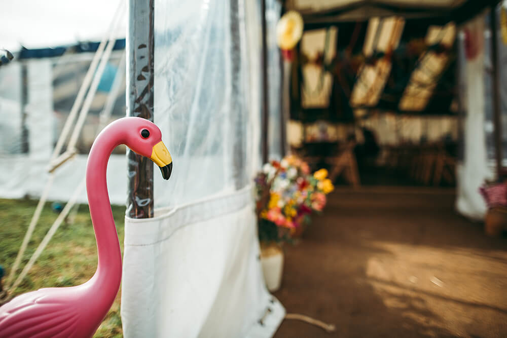 A flamingo farm wedding in Cornwall - Image 43