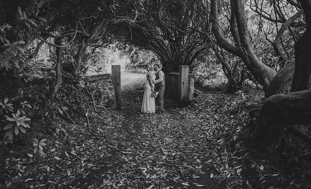 bride and groom portrait at Knightor Winery wedding venue St Austell