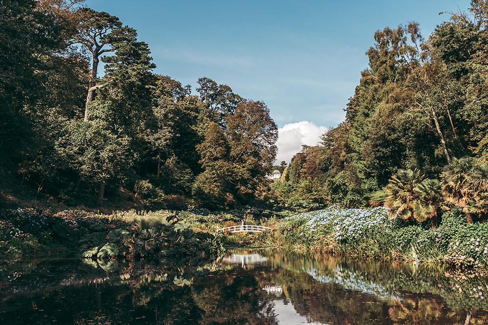 best trebah garden wedding photography 2020 - 28